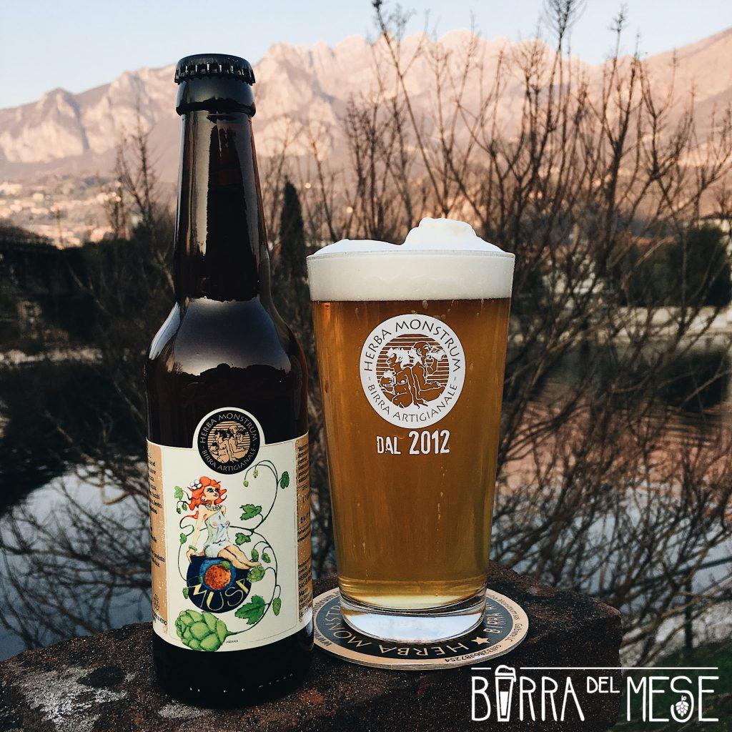 Musa, birra di Aprile 2019. Herba Monstrum Brewery via Ettore Monti, 29, 23851 in zona Ponte Azzone Visconti Lecco.